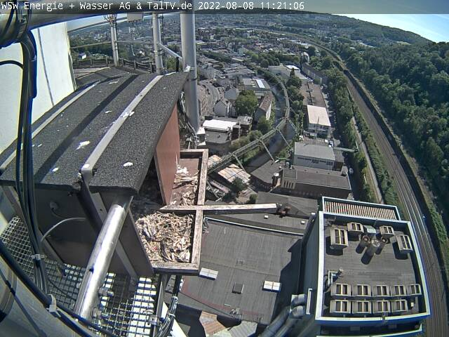 Webcam Wuppertal Falkenhorst